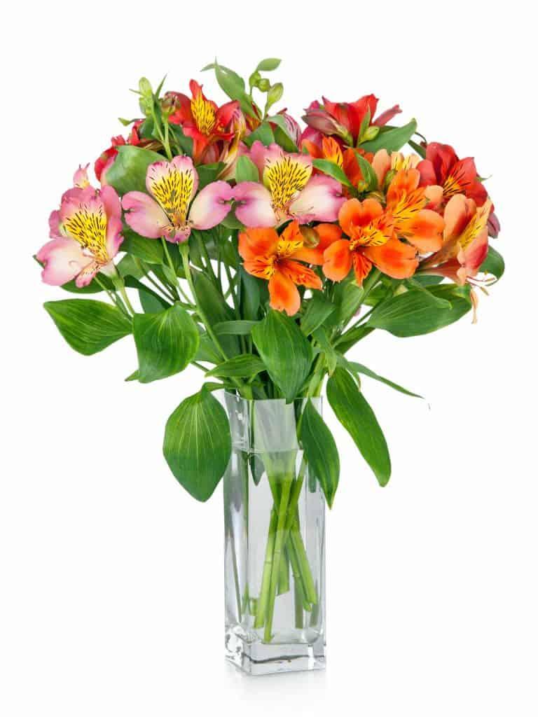 Çiçekler Vazoda Nasıl Taze Kalır?