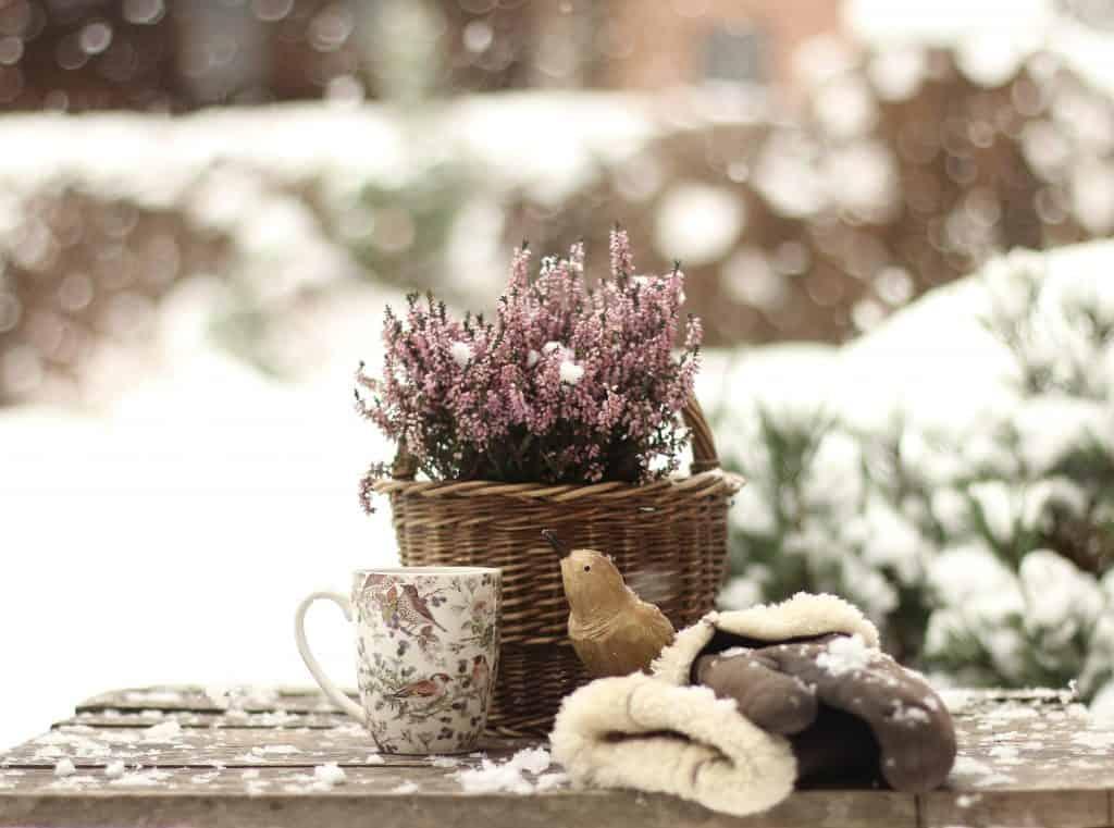 Bahçelere Kış Koruması