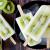 Kivili Vanilyalı Yoğurtlu Dondurma